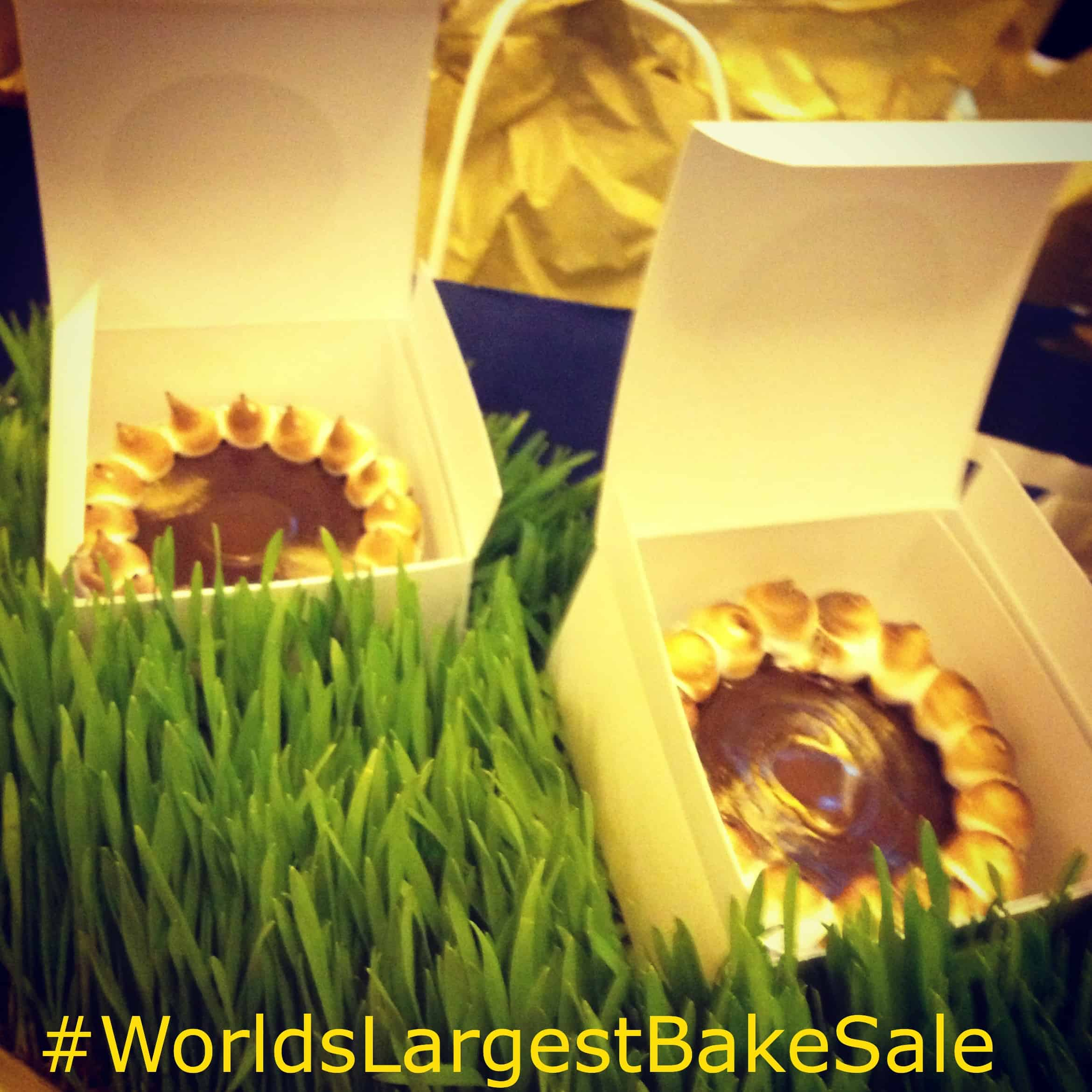 chocolate smores tartlette, world's Largest bake sale, Sandra Lee