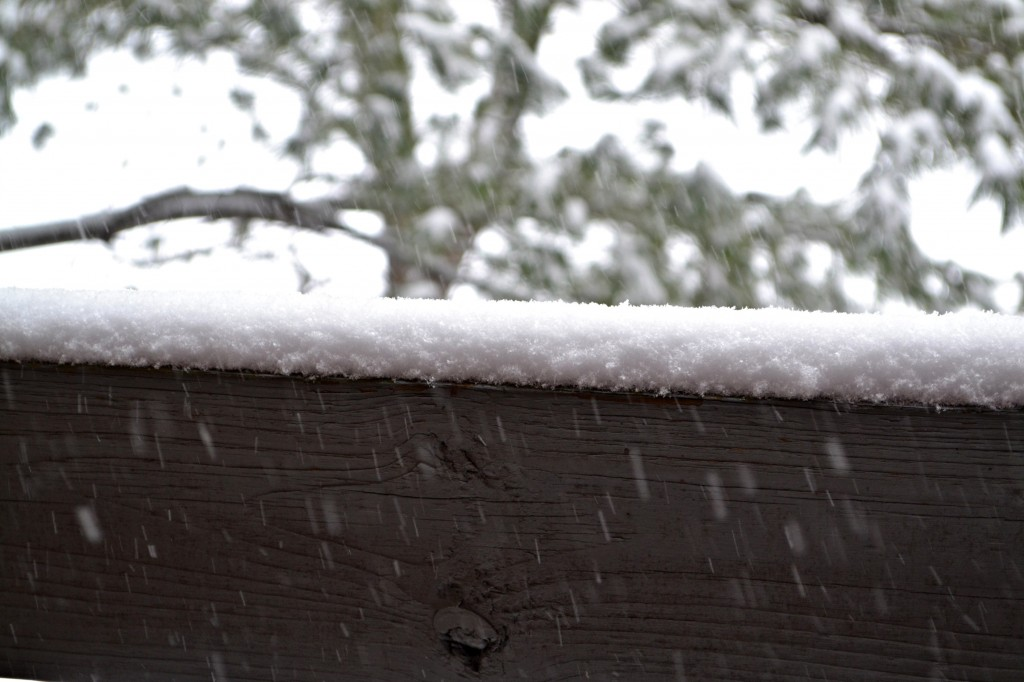 picture of snow on a banister