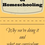 Our First Year of Homeschooling – Curriculum