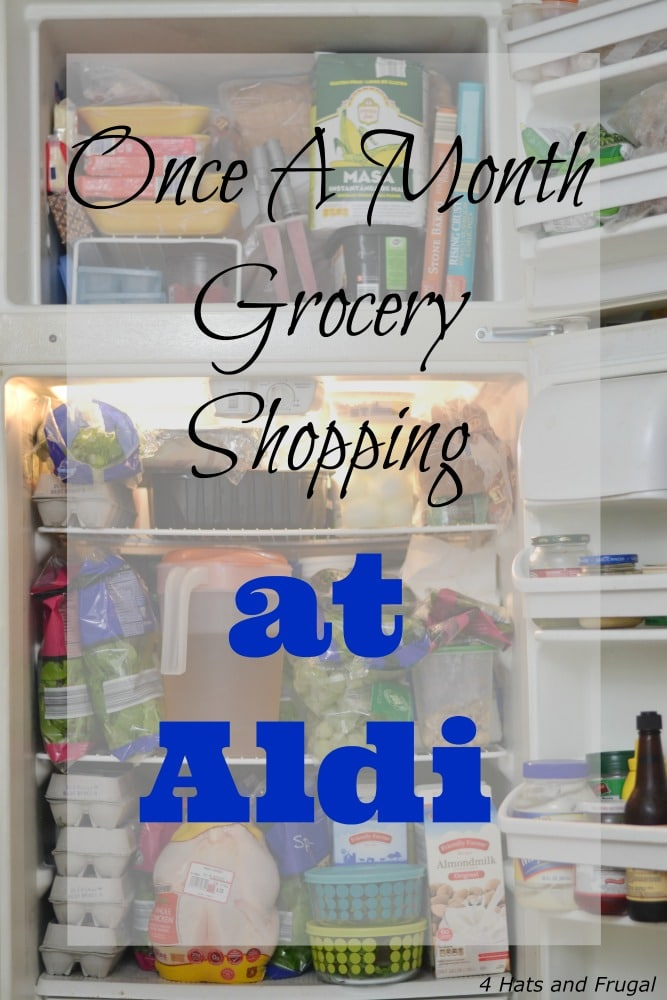 have you ever tried once a month grocery shopping at aldi this family of 5