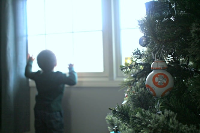 The Ornament Tradition