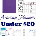 Awesome Planners Under 20 Dollars