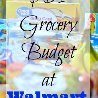 $64 Grocery Shopping at Walmart