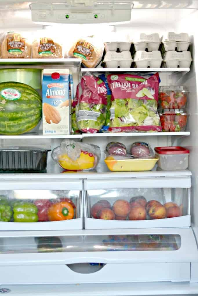 USDA Food Plan Challenge - $174 Grocery Budget at ALDI fridge