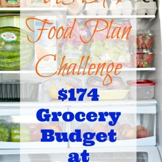 USDA Food Plan Challenge - $174 Grocery Budget at ALDI hero