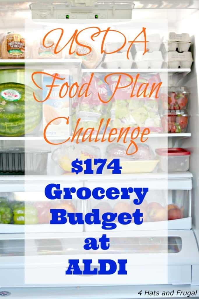 USDA Food Plan Challenge - $174 Grocery Budget at ALDI hero