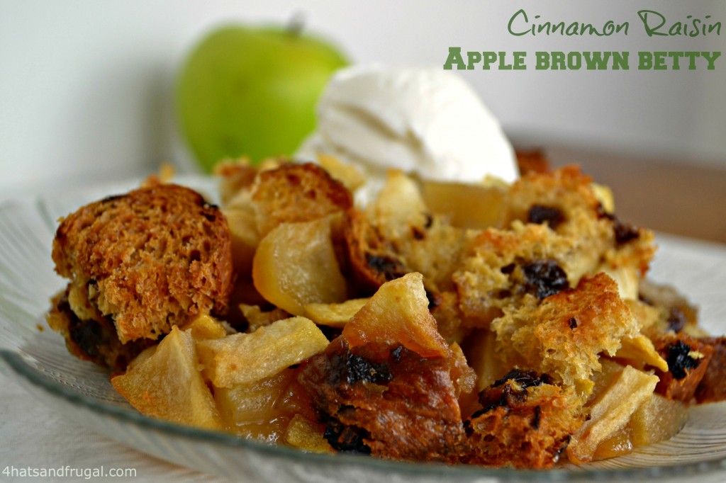 A simple apple brown betty recipe using cinnamon raisin bread. Delicious, easy and a great fall dessert.