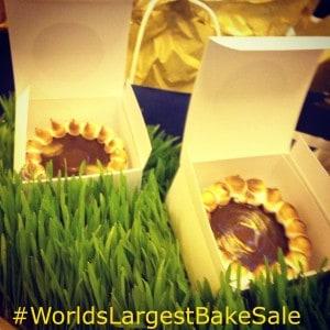 chocolate smores tartlette, world's Largest bake sale, Sandra Lee