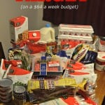 64 Dollar Grocery Budget at Target
