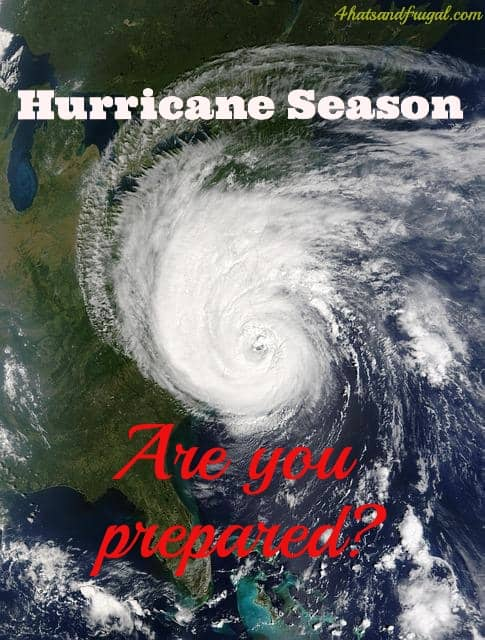Hurricane season officially starts June 1st. Here is a great post highlighting what NYC families should do to prepare.