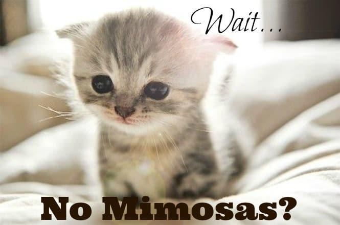 No mimosas