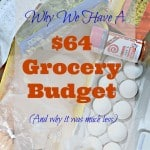 Why We Have A $64 Grocery Budget – And Why It Was Less