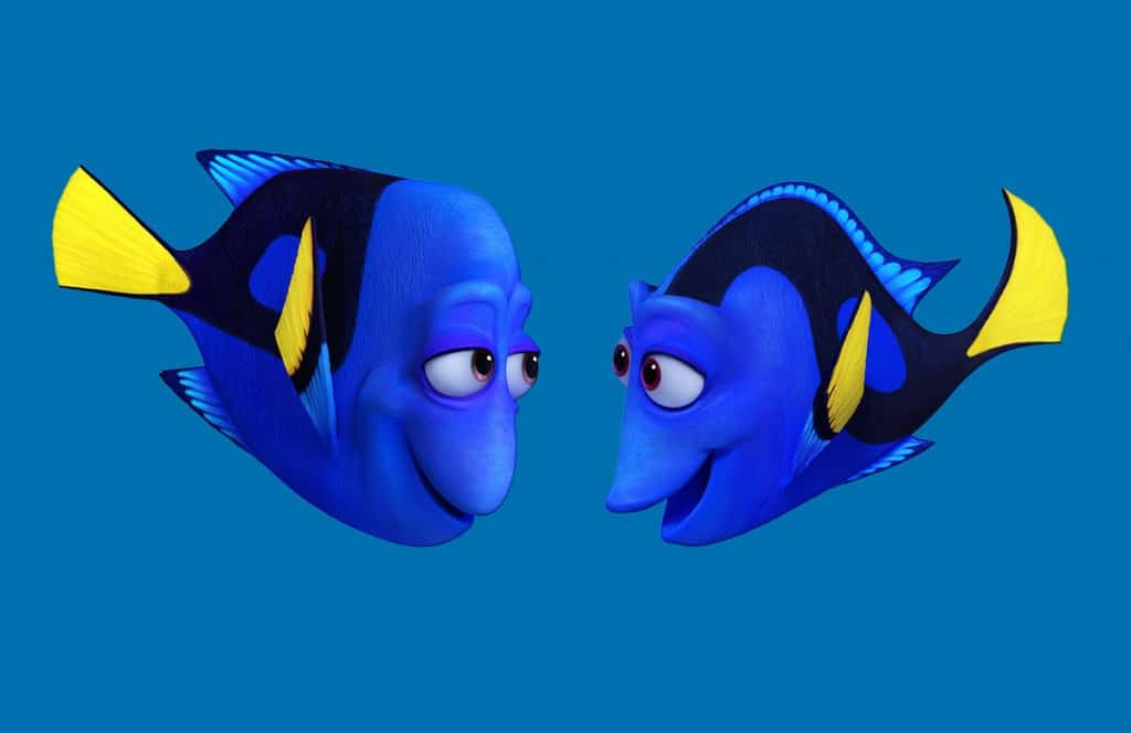 Charlie and Jenny Finding Dory