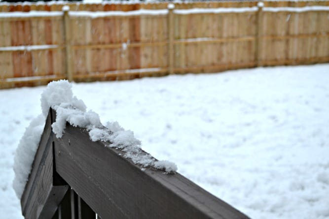 Snow Day copy 3