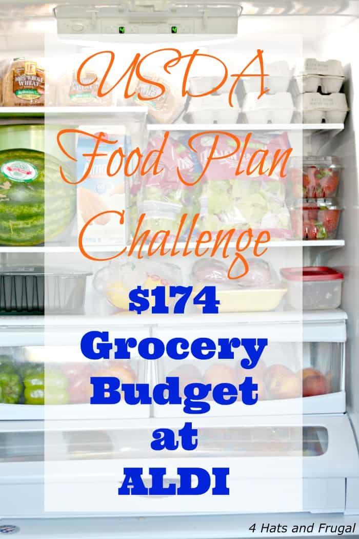 USDA Food Plan Challenge - $174 Grocery Budget at ALDI - 4